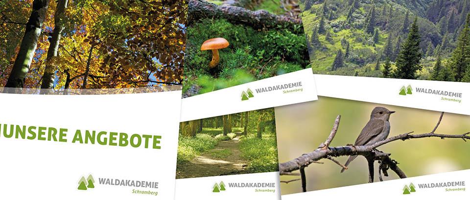 Stapel von Printmaterialien von der Waldakademie in Schramberg