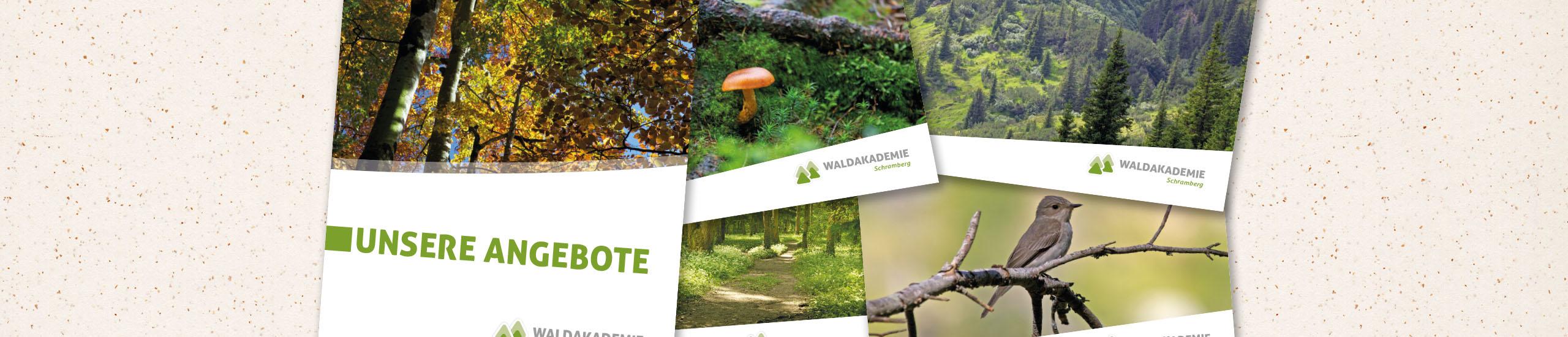 Waldakademie-Schramberg-sudhaus7-2